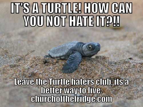 Turtle hater