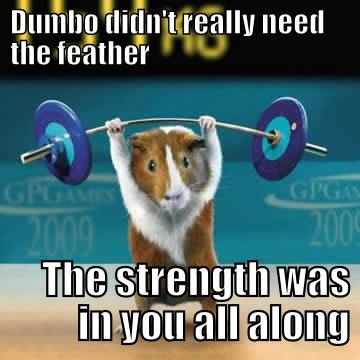 hamster strength